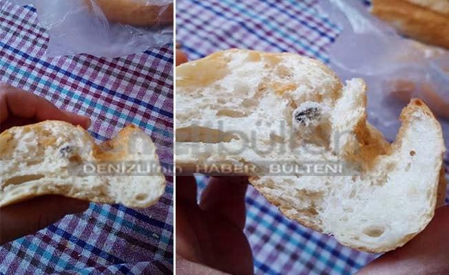 Ekmeğin içinden çıkanı görünce, yetkililere bildirdi