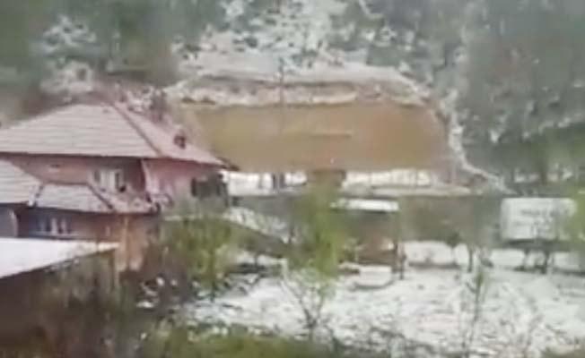 Buldan'da dolu tarım alanlarına zarar verdi