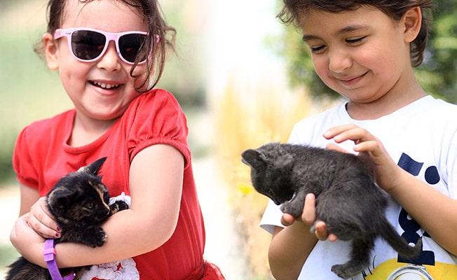 Hayvan sevgisini küçük yaşta öğreniyorlar