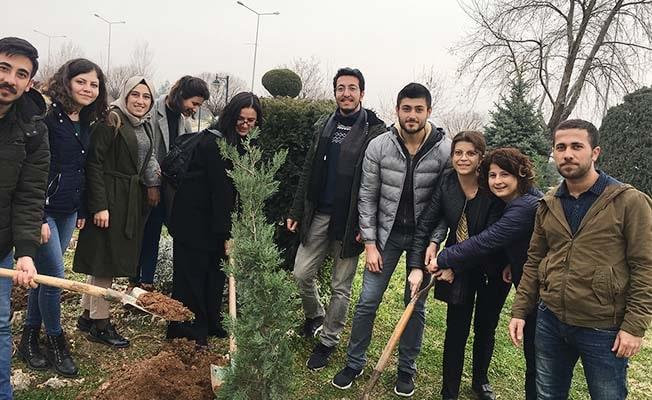 PAÜ'lü mezunlar ağaç dikerek veda etti