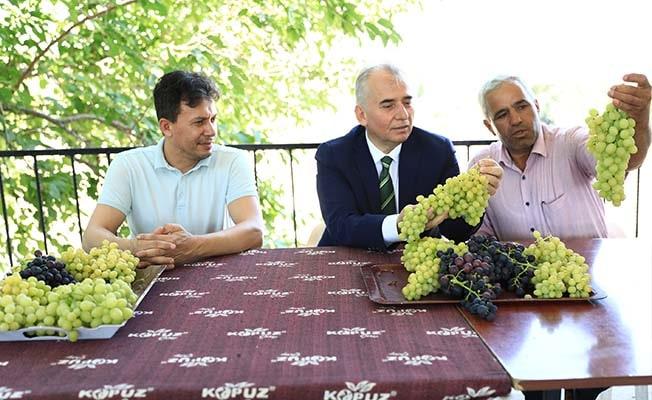 Başkan Zolan, üzüm üreticileri ile bir araya geldi