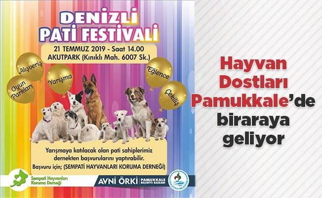 Hayvan Dostları Pamukkale'de biraraya geliyor