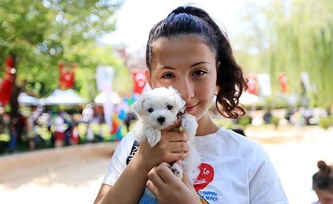 Pamukkale'de Pati Festivali, hayvan dostlarını buluşturdu