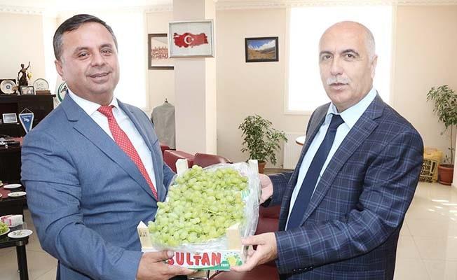 Çal 'e-ticaret' dedi, Vali Karahan kutladı