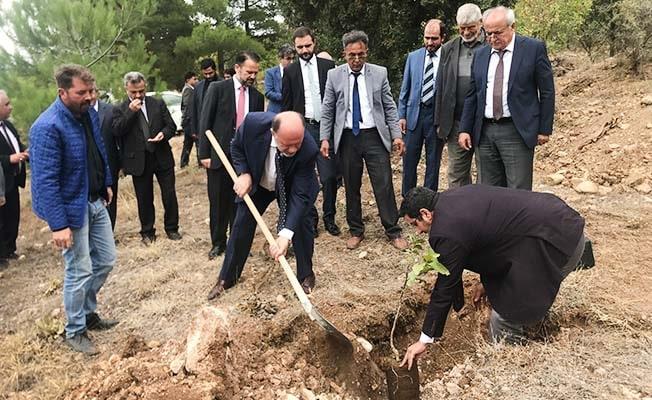 Müftüler Baklan'da ağaç dikti