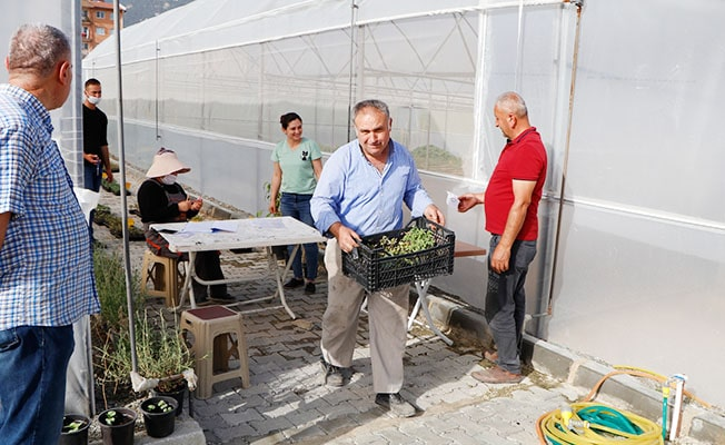 Honaz yerli tohumla dolup taşıyor