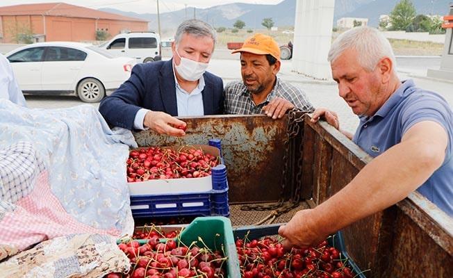 Honaz'da Kiraz üreticilerine destek