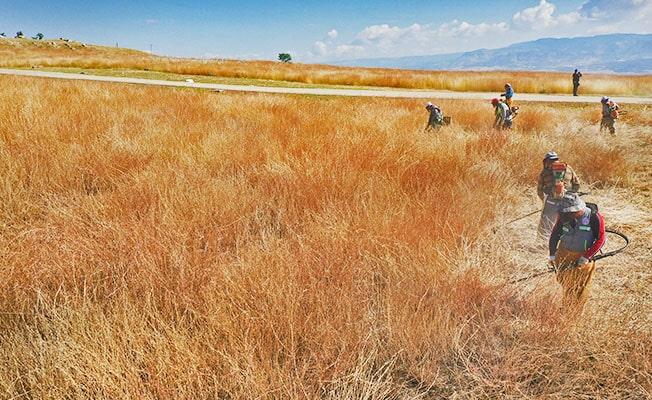 Laodikya'nın yabani otları 100 kişilik ekiple temizlendi