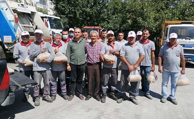 Bozkurt'ta tarım projesi ilk ürünleri verdi