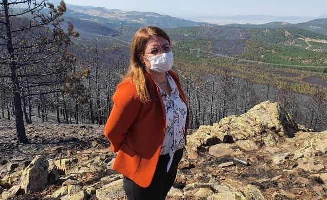 Karaca yangın bölgesinde