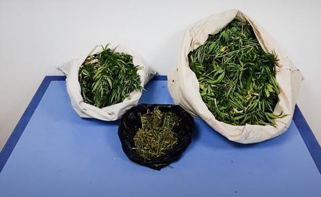Pamukkale'de uyuşturucu operasyonu