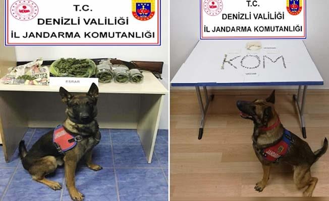 Jandarma'nın uyuşturucuyla mücadele seferberliği sürüyor