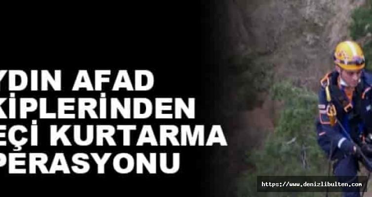 Aydın'da mahsur kalan keçi kurtarıldı