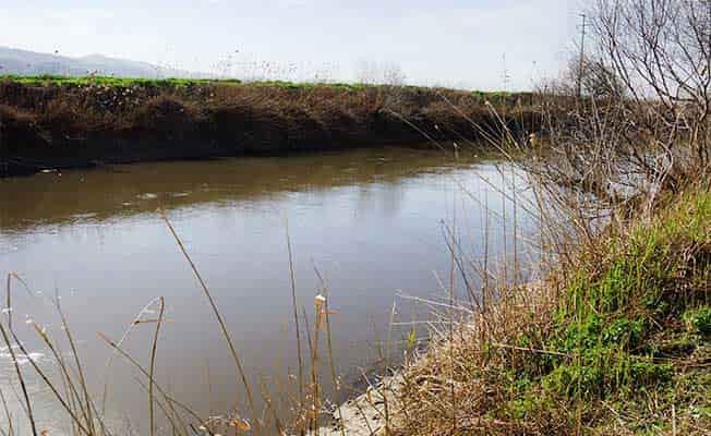 Nehirde ölü bulundu