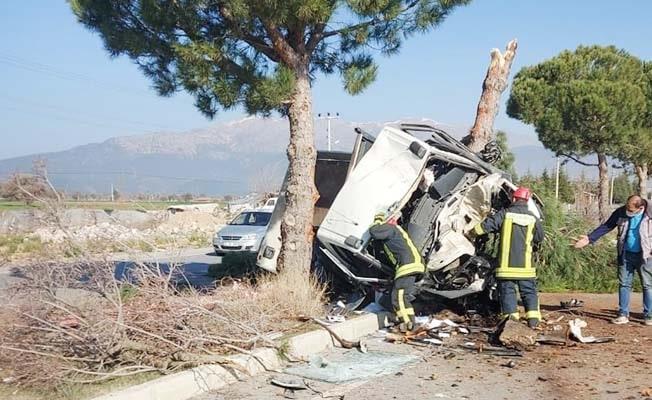 Refüjdeki ağacı devirdi, hurdaya dönen kamyonetten yaralı kurtuldu