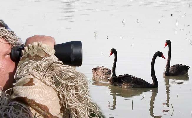 11 yılda Denizli'nin 318 kuş türünü fotoğrafladılar