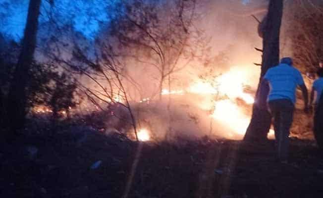 Mangal dumanı sandılar orman yangını ile karşılaştılar