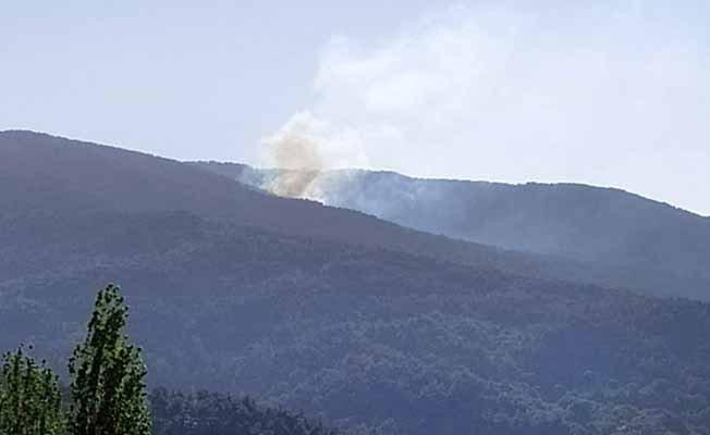 Orman yangınında 3 dönümlük alan küle döndü