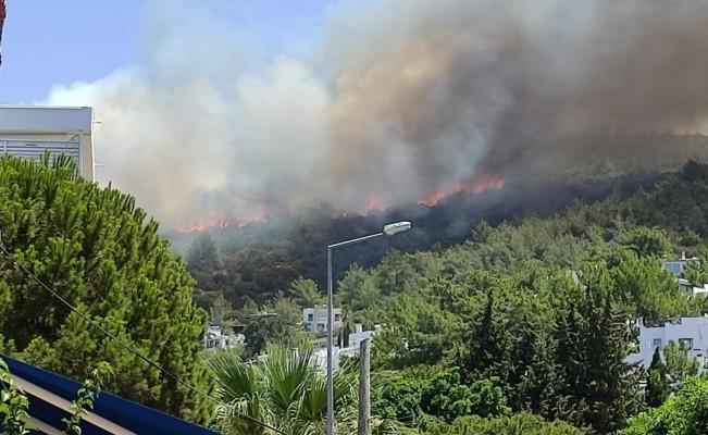 Bodrum'daki yangına ekiplerin müdahalesi başladı