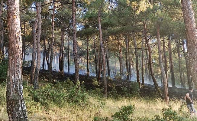 Denizli'de yerleşime yakın noktada çıkan orman yangını paniğe neden oldu