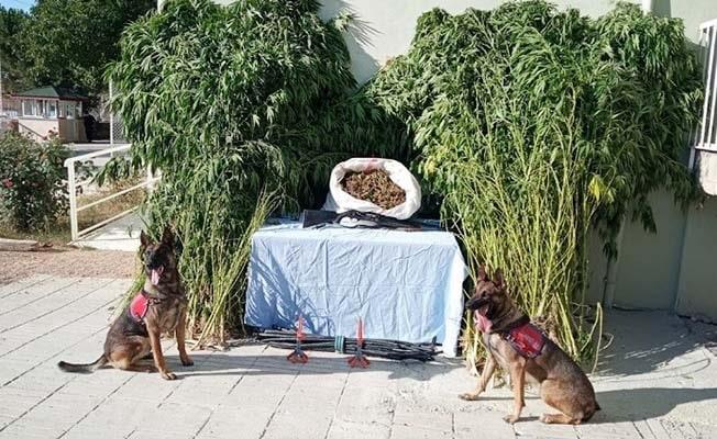 Jandarma, adım adım takip ettiği şüphelileri 10 kilo esrarı satamadan yakaladı