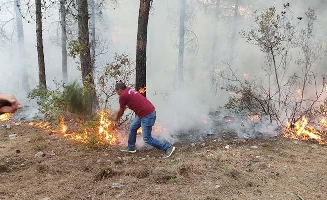 Orman yangını yoğun çabayla büyümeden engellendi