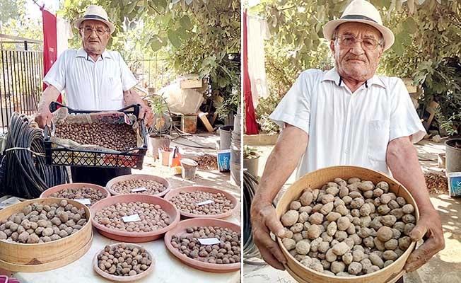 Salep dede, 10 yılda 5 farklı türde salep üretmeyi başardı