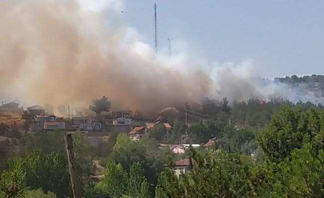 Uşak'ta orman yangını köyü tehdit ediyor