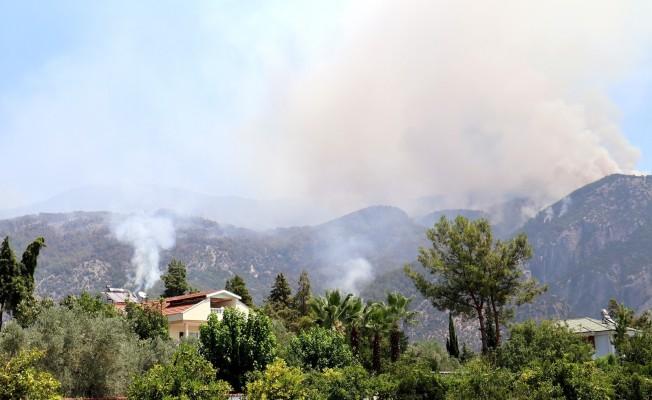 Yangın alanları afet bölgesi ilan edildi