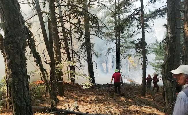 Buldan'daki 2. orman yangını da söndürüldü