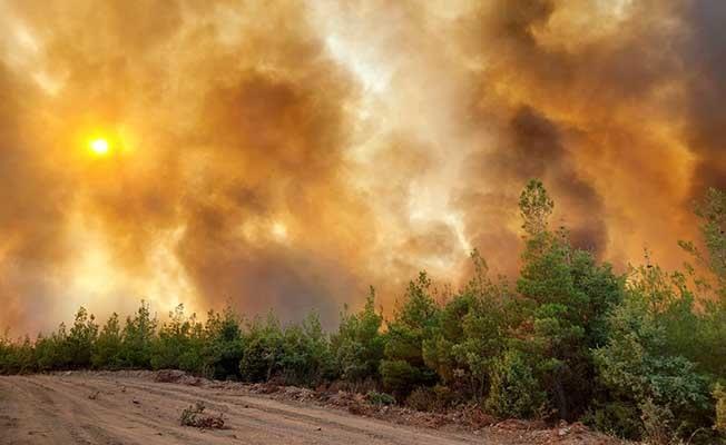 Kavaklıdere'de yangın büyüyor