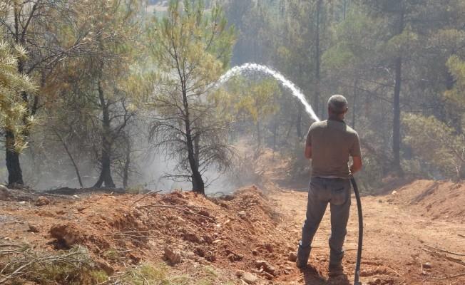 Uşak'ta çıkan orman yangını büyümeden söndürüldü