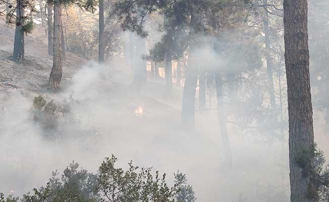 Valilik; Denizli'de devam eden bir yangın bulunmamaktadır