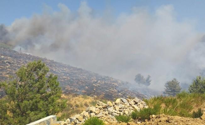 Bodrum'daki yangına havadan ve karadan müdahale ediliyor