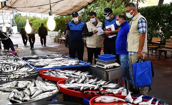 Buldan'da balık pazarı denetlendi