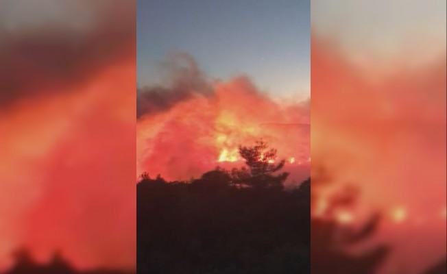 İzmir'de orman yangını: çok sayıda ekip müdahale ediyor