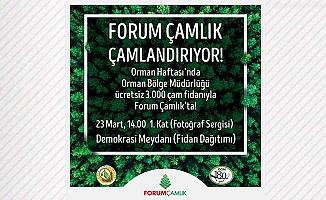 Forum Çamlık, Orman Haftasında çamlandırıyor