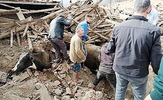 Valilik depremin bilançosunu açıkladı