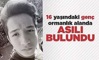 16 yaşındaki genç ormanlık alanda asılı bulundu