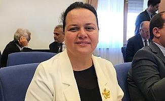Milletvekili Ök, Sağlık Bakanlığı bütçesini değerlendirdi