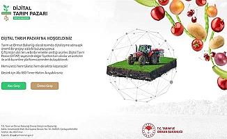 Dijital Tarım Pazarı kullanıma açıldı