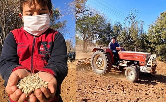 Buğdayın atası Siyez, Tavas toprağıyla buluştu