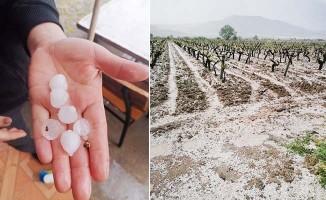 Dolu yağışının vurduğu Honaz ve Serinhisar'da ön hasar tespit çalışmaları tamamlandı