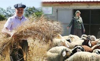 Köyde yaşamak isteyenlere proje desteği