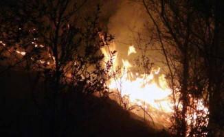 Muğla'daki yangınlar kontrol altına alındı