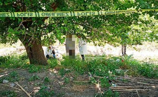 66 yaşındaki adam, ağaca asılı halde buldu