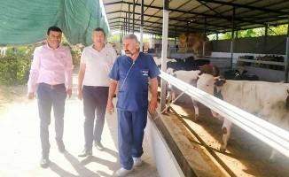 Çavuşoğlu süt üreticilerine destek istedi