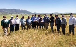CHP heyeti, Denizli'de kuraklık ve tarımsal sorunları inceledi