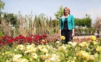 Merkezefendi Belediyesi kendi ürettiği çiçeklerle tasarruf sağlıyor