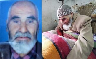 Çameli'nin en yaşlı çınarı hayatını kaybetti